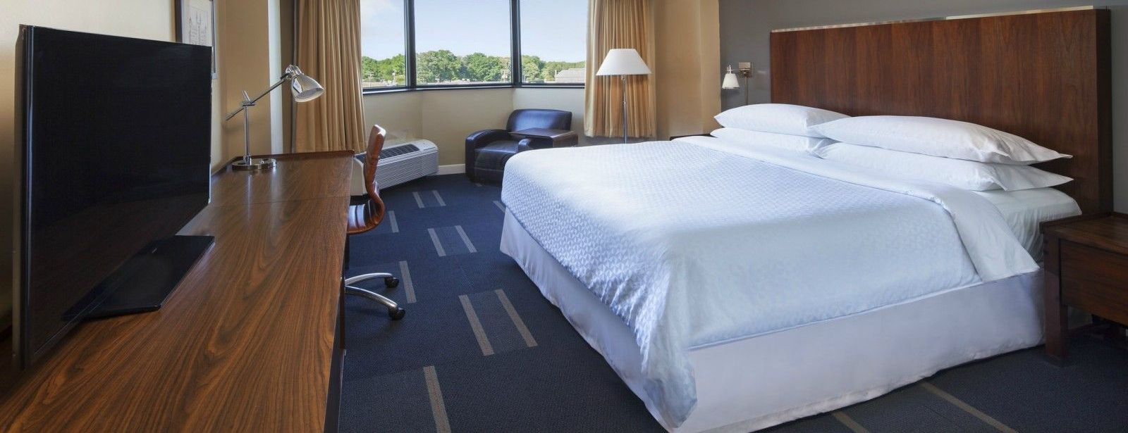 Richmond Accommodations - Accessible King Room